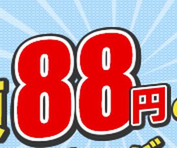 WordPressも使えるレンタルサーバーが月額88円!「88サーバー」が安すぎる!