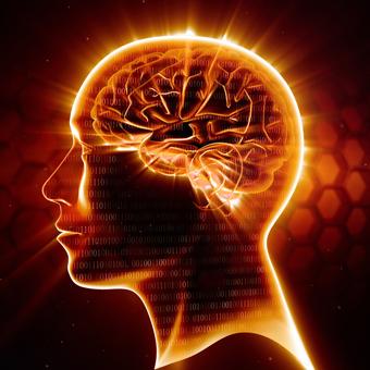 能力を上げたい人必見!脳の処理速度を何倍にも引き上げる「超高速脳ブートキャンプ」が凄すぎる!